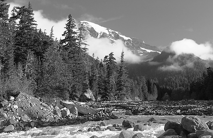 Mount Rainier ( black and white )